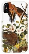 Audubon Dove IPhone Case