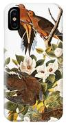 Audubon Dove IPhone Case