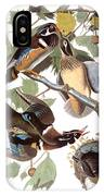 Audubon: Duck IPhone Case