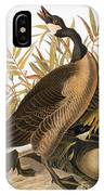 Audubon: Goose IPhone Case