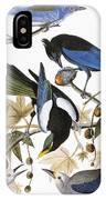 Audubon: Jay And Magpie IPhone Case