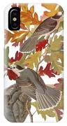 Audubon: Jay IPhone Case