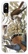 Audubon: Kestrel, 1827 IPhone Case