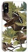 Audubon: Nighthawk IPhone Case