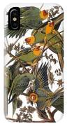 Audubon: Parakeet IPhone Case