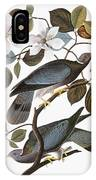 Audubon: Pigeon IPhone Case