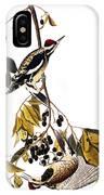 Audubon Sapsucker, 1827-38 IPhone Case