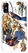 Audubon: Scrub Jay, 1827-38 IPhone Case