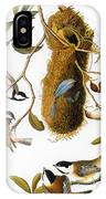 Audubon: Titmouse IPhone Case