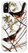 Audubon: Towhee IPhone Case