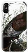 Audubon: Turkey IPhone Case