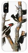 Audubon: Woodpecker IPhone Case