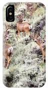 August Bucks IPhone Case