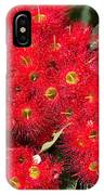 Australian Native Eucalyptus Flowers IPhone Case