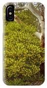 Australian Wattles Bush And Candlebark Gum Tree IPhone Case