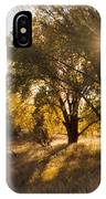 Autum Sunburst IPhone Case