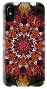 10446 Autumn 01 Kaleidoscope IPhone Case