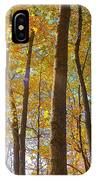 Autumn Afternoon Light IPhone Case