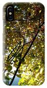 Autumn Archway IPhone Case