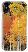 Autumn Aspen Trees IPhone Case