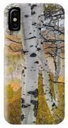 Autumn Aspens 8 IPhone Case