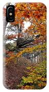 Autumn At Beech Forest IPhone Case