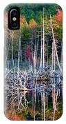 Autumn At Moosehead Bog IPhone Case