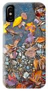 Autumn B 2015 116 IPhone Case