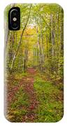Autumn Birch Woods IPhone Case