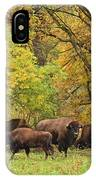 Autumn Bison IPhone Case