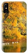 Autumn Calm IPhone Case