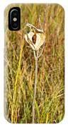 Autumn Caped IPhone Case