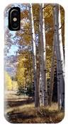 Autumn Chama New Mexico IPhone Case