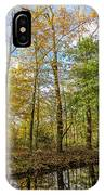 Autumn Color Reflections IPhone Case