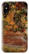 Autumn Colors 37 IPhone X Case