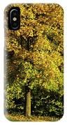 Autumn Colors 8 IPhone Case