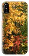 Autumn Colors II IPhone Case