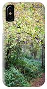 Autumn Colors In The Forest IPhone Case
