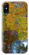 Autumn Colors Of Reflection IPhone Case