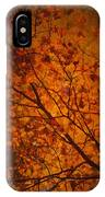 Autumn Colours IPhone X Case