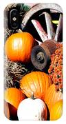 Autumn Display IPhone Case