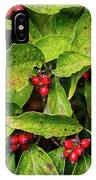 Autumn Dogwood Berries IPhone Case