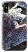 Autumn Ends, Winter Begins 2 IPhone Case