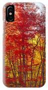 Autumn Experience IPhone Case