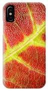 Autumn Fall Colours 2 IPhone Case