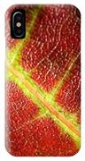 Autumn Fall Colours 7 IPhone Case