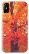 Autumn Flame IPhone Case