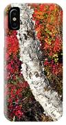 Autumn Foliage In Finland IPhone Case