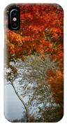 Autumn Gate IPhone X Case