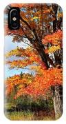 Autumn Glory IPhone Case by Gigi Dequanne